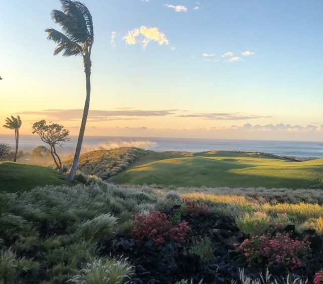 Paesaggio delle Hawaii