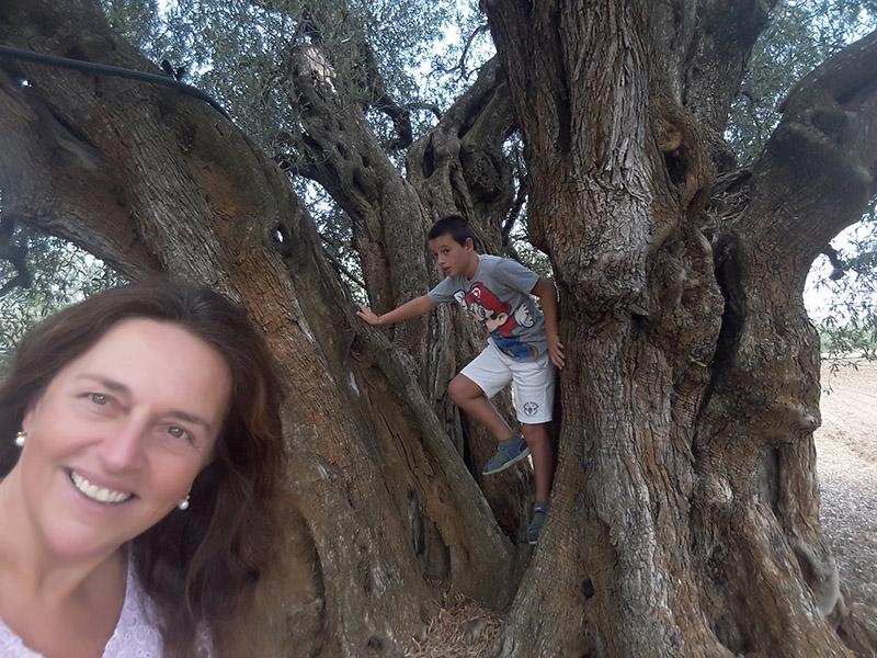 Un ulivo secolare, una donna e un bambino